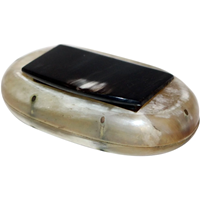 WB-883: 19th Century Horn Oval Snuff Box